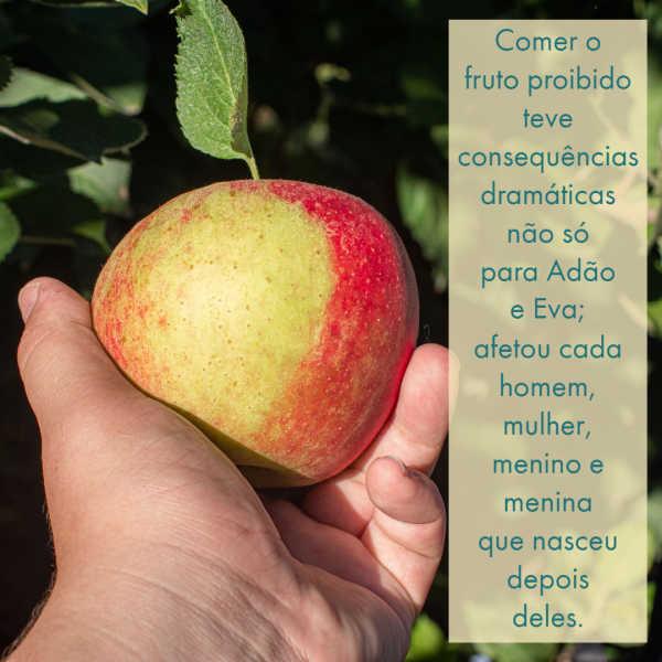 Um homem agarra uma maçã, pronto para a arrancar de uma árvore.Comer do fruto proibido teve consequências intermináveis para a raça humana.