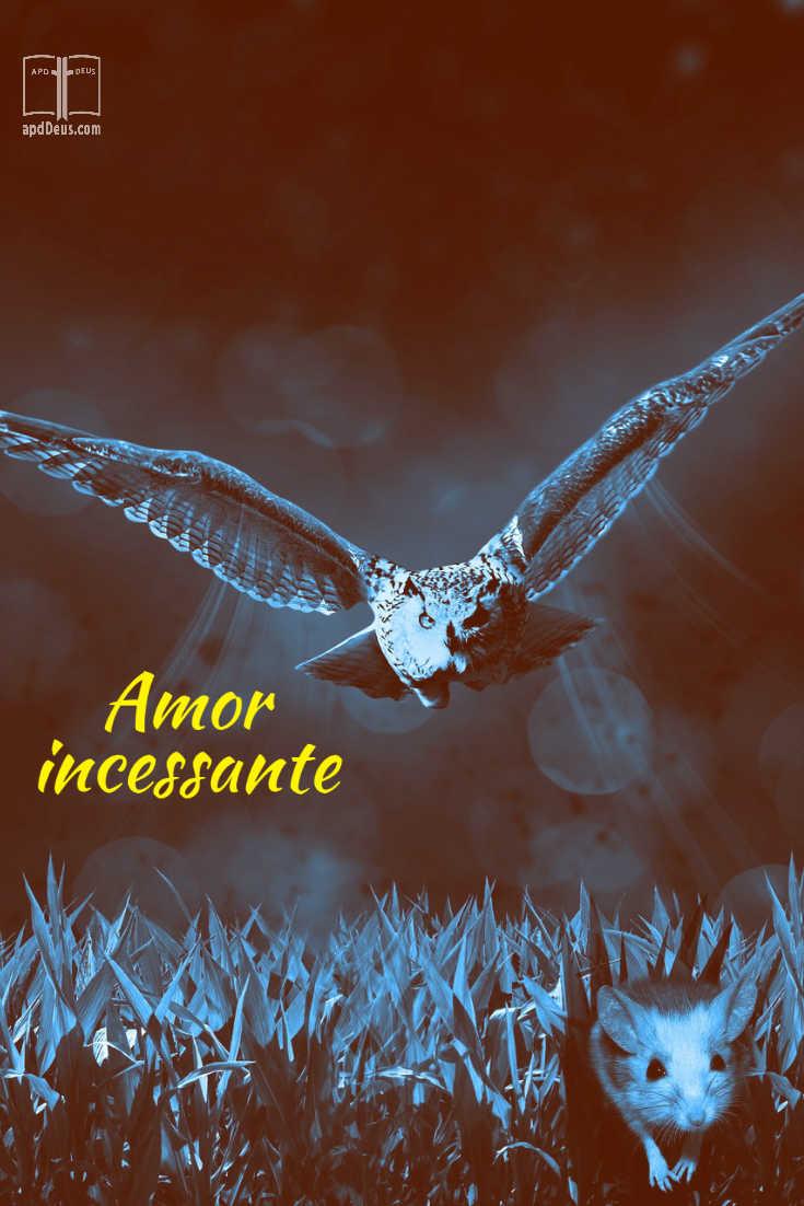 Uma coruja persegue implacavelmente um rato do campo através da grama. O amor de Deus é implacável assim.