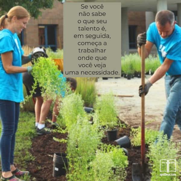 Um grupo trabalha em conjunto para plantar um jardim. Um pás a terra, outro coloca a planta no buraco, enquanto outro rega a planta. Cada pessoa tem seu próprio trabalho.