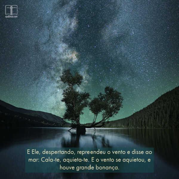 Um céu estrelado noturno se reflete nas águas calmas. Paz, Silêncio.