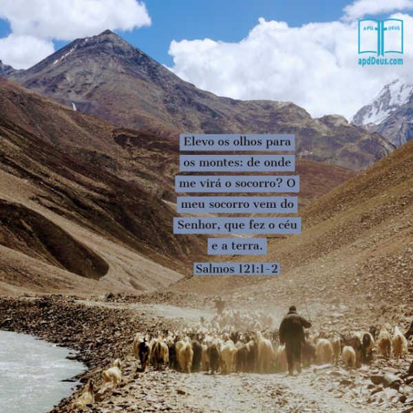 Um pastor escoltando suas ovelhas através de um vale rochoso. Elevo os olhos para os montes: de onde me virá o socorro? O meu socorro vem do Senhor, que fez o céu e a terra.(Salmos 121:1-2)