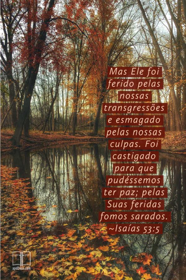 Árvores com folhagem de outono cercam um lago calmo. As palavras de Isaías 53:5 nos encorajam a que pelas feridas de Jesus sejamos curados.