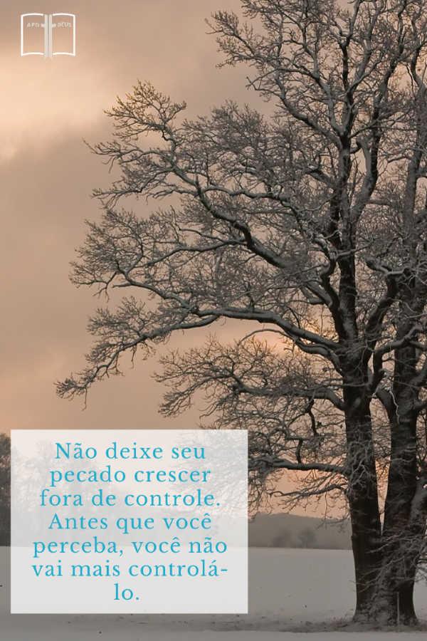 Uma majestosa árvore coberta de neve enche a paisagem. Não deixe seu pecado crescer fora de controle. Antes que você perceba, você não vai mais controlá-lo.